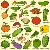 Sistema de color con las verduras, etiquetas engomadas de la historieta del vector Fotos de archivo