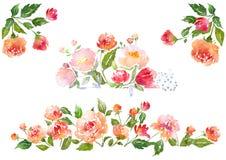 Sistema de composición floral de la acuarela Foto de archivo libre de regalías