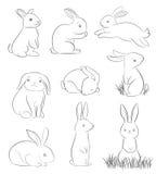 Sistema de conejos lindos de la historieta Fotografía de archivo