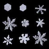Sistema de copos de nieve aislados en fondo negro Foto de archivo libre de regalías