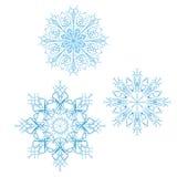 Sistema de 3 copos de nieve detallados del vector ilustración del vector