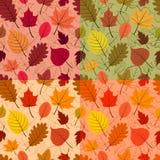 Sistema de cuatro modelos coloridos del otoño Fotos de archivo libres de regalías
