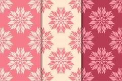 Sistema de diseños florales del rojo cereza Modelos inconsútiles verticales Fotos de archivo