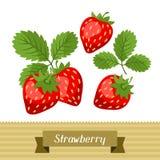Sistema de diversas fresas estilizadas Fotos de archivo libres de regalías