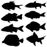Sistema de diversas pequeñas siluetas de los pescados Fotos de archivo