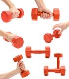 sistema de diversas pesas de gimnasia para los deportes y la aptitud, mano de la mujer Aislado en el fondo blanco Imágenes de archivo libres de regalías