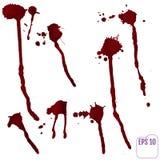 Sistema de diversas salpicaduras de la sangre o de la pintura Vector Foto de archivo libre de regalías