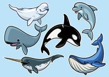 Sistema de diverso alegre de ballenas ilustración del vector