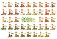 Sistema de 40 diversos hierbas, especies y condimentos culinarios en estilo de la historieta Ilustración del vector Foto de archivo libre de regalías