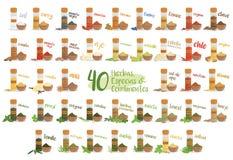 Sistema de 40 diversos hierbas, especies y condimentos culinarios en estilo de la historieta Nombres españoles Ilustración del ve Foto de archivo libre de regalías