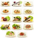 Sistema de diversos platos sabrosos Fotografía de archivo libre de regalías