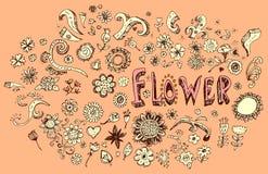 Sistema de diversos tamaños de las formas de las flores Foto de archivo