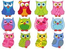 Sistema de doce búhos coloridos de la historieta Foto de archivo libre de regalías