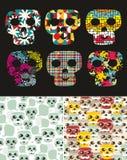 Sistema de ejemplos con el cráneo libre illustration