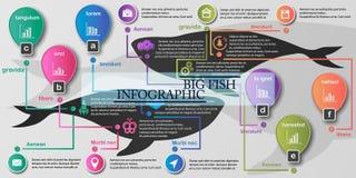 Sistema de elemento de Infographics Foto de archivo