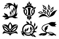 Sistema de elementos caligráfico del diseño, vector Fotografía de archivo libre de regalías