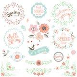 Sistema de elementos de la primavera stock de ilustración