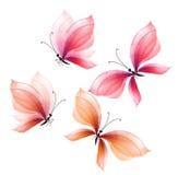 Sistema de elementos de lujo del diseño de la mariposa Ilustración drenada mano Imagenes de archivo
