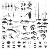 Sistema de elementos del diseño de las etiquetas de la pesca Iconos de Roces y de los pescados des Imagen de archivo