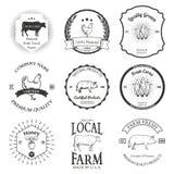 Sistema de elementos del diseño de la etiqueta del vector de la agricultura Fotografía de archivo libre de regalías