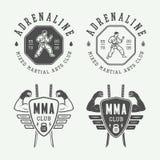 Sistema de elementos del karate del vintage o del logotipo, del emblema, de la insignia, de la etiqueta y del diseño de los artes Imagenes de archivo