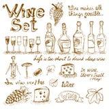 Sistema de elementos del vino Foto de archivo