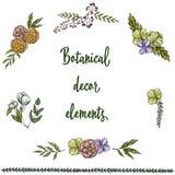 Sistema de elementos dibujados mano de la decoración del vintage aislados en el fondo blanco Flores y hojas decorativas Ilustraci Imagen de archivo