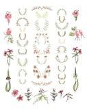 Sistema de elementos florales simétricos del diseño gráfico Imagen de archivo libre de regalías