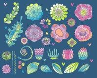 Sistema de elementos de la flor, suculento, color de rosa, vector de la hoja ilustración del vector
