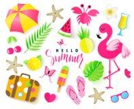Sistema de elementos lindos del verano Flamenco rosado, hojas tropicales, paraguas, cangrejo, chancletas, piña, cereza, orangeand
