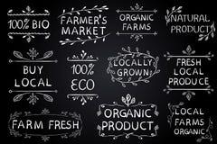 Sistema de elementos tipográficos del VECTOR en la pizarra Los granjeros comercializan, cultivan la comida fresca del eco en el f Foto de archivo