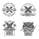 Sistema de emblemas que practican surf Imagen de archivo