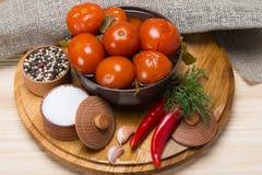 Sistema de especias, pimienta, sal, hierbas, tomate salado, en una superficie de madera imagen de archivo