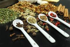 Sistema de especias y de condimentos con las cucharas blancas en negro Imagen de archivo libre de regalías