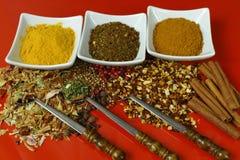 Sistema de especias y de condimentos con las cucharas viejas del metal en la tabla roja Imagenes de archivo