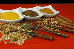 Sistema de especias y de condimentos con las cucharas viejas del metal en la tabla roja Fotos de archivo