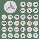 Sistema de estilo del triángulo de los animales Imagen de archivo libre de regalías