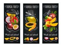 Sistema de etiqueta de la pizarra de las frutas tropicales Imagenes de archivo