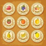 Sistema de etiqueta de las frutas y de las bayas ilustración del vector