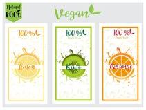 Sistema de etiqueta natural, bio, fresco, sano de la comida en vector Fotografía de archivo libre de regalías