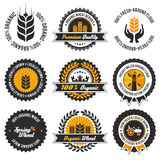 Sistema de etiqueta orgánico del trigo Fotografía de archivo libre de regalías