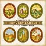 Sistema de etiquetas colorido de la cosecha del vintage ilustración del vector