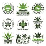 Sistema de etiquetas con diversas imágenes de las plantas de marijuana Hierbas médicas, hoja del cáñamo libre illustration