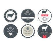 Sistema de etiquetas, de insignias y de elementos del diseño Imágenes de archivo libres de regalías