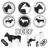 Sistema de etiquetas de la carne de vaca, de insignias y de elementos superiores del diseño Vector Foto de archivo