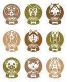 Sistema de etiquetas de la comida de perro Fotografía de archivo