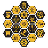 Sistema de etiquetas de la miel Imágenes de archivo libres de regalías