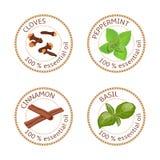 Sistema de etiquetas de los aceites esenciales Clavos, hierbabuena, canela, albahaca stock de ilustración