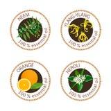 Sistema de etiquetas de los aceites esenciales Ylang-ylang, neem, neroli, anaranjado Foto de archivo libre de regalías