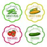 Sistema de etiquetas del vector con la verdura dibujada mano Imágenes de archivo libres de regalías
